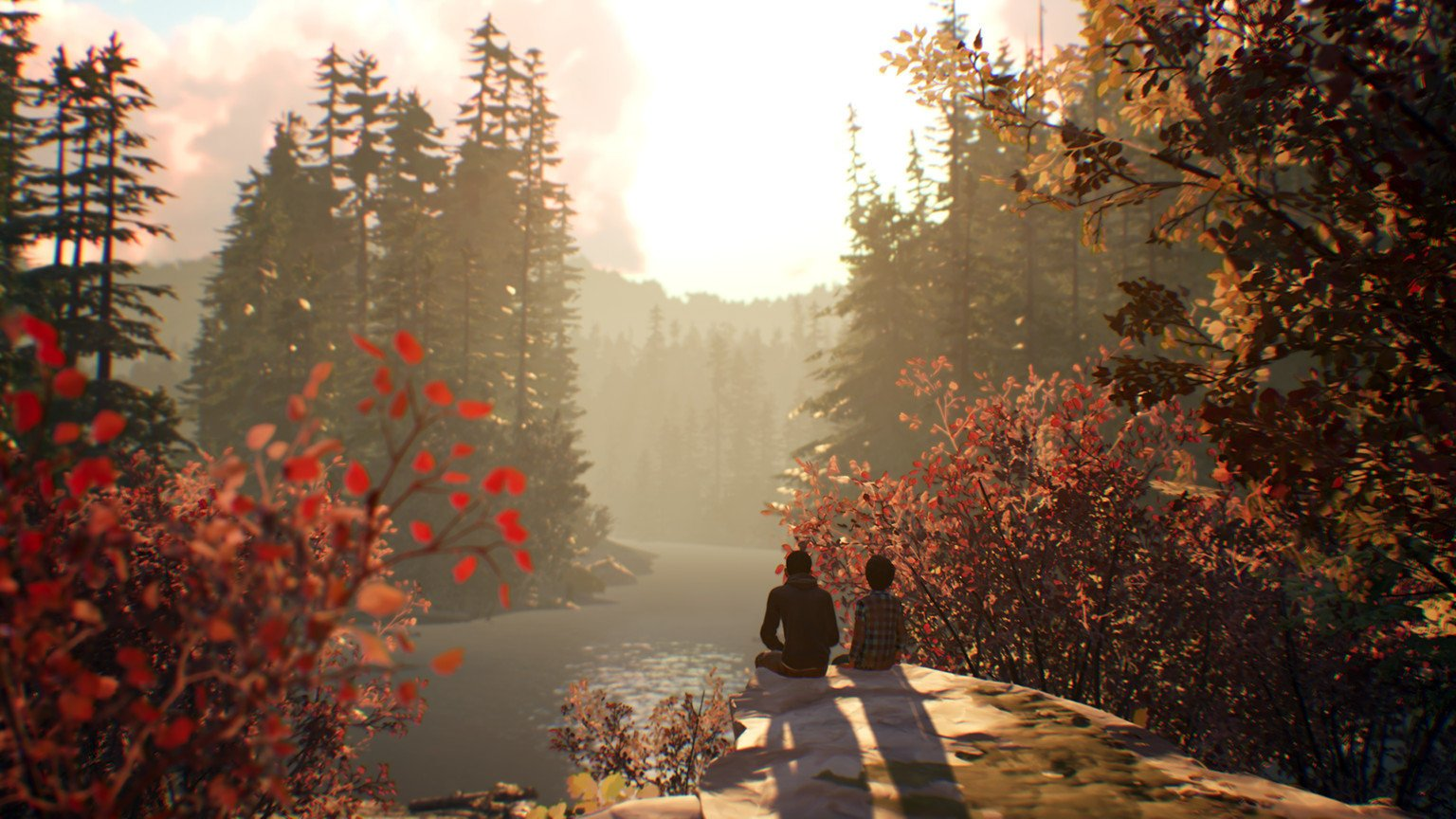 Catch up on indies you might have missed by grabbing games like Life is Strange 2 on the PS Store during Black Friday 2019.